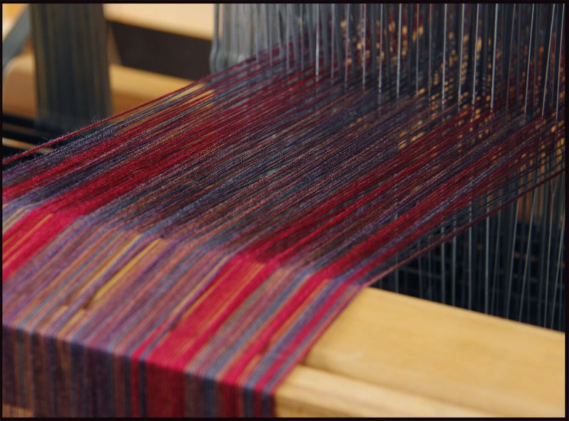 Warp threads going through the heddles at the back of the loom.